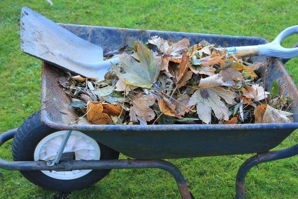 déchets verts à récupérer