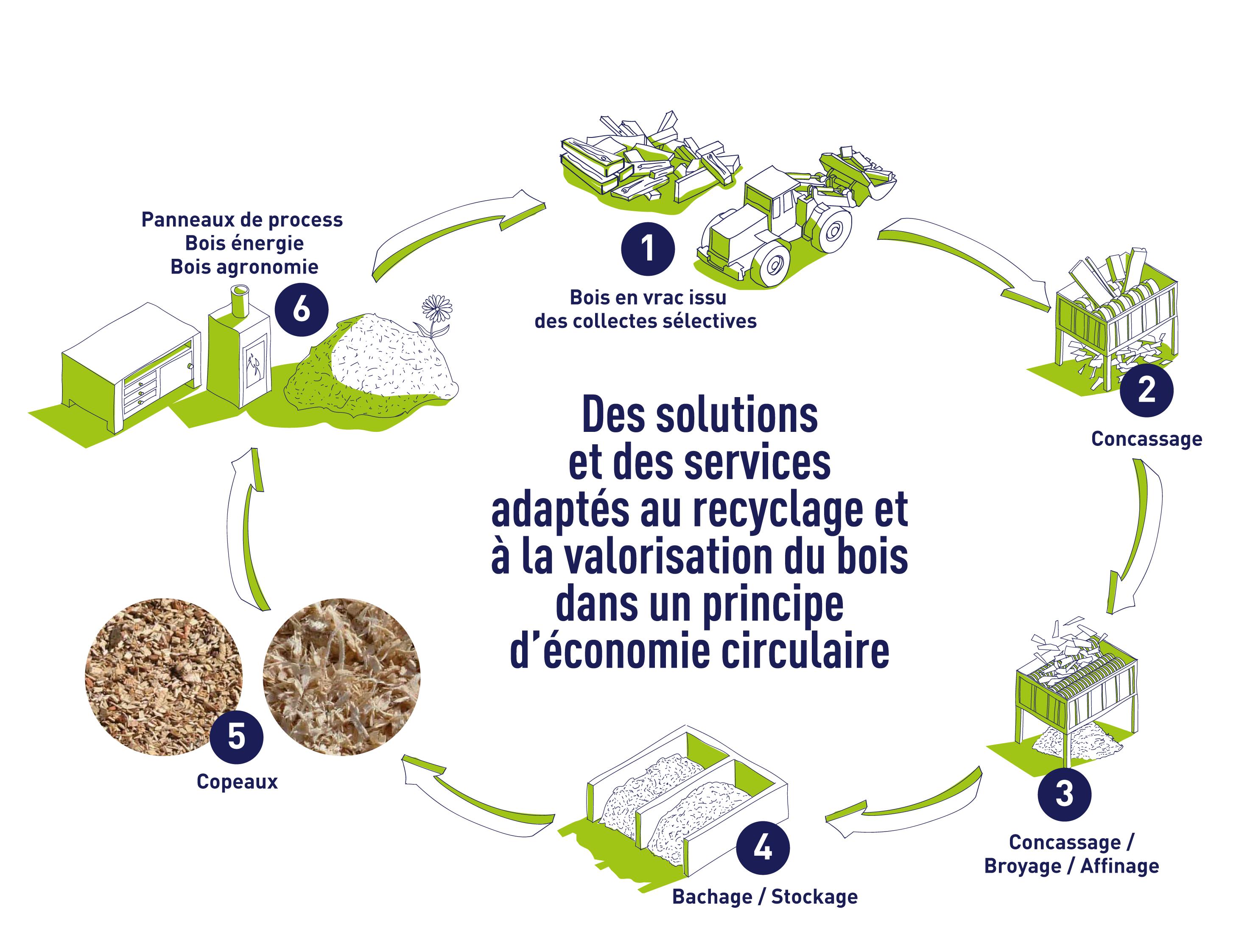 infographie sur le recyclage et la valorisation des dechets bois